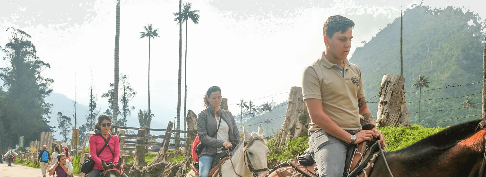 Tour de café y experiencias de cabalgata la región cafetera del café y viajes con la gente y la naturaleza de colombia